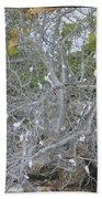 Branches 1 Beach Towel