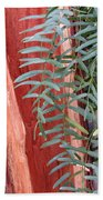 Branches And Bark Beach Towel