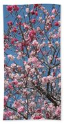 Branches And Blossoms Beach Towel
