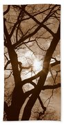 Branches In The Dark 2 Beach Towel