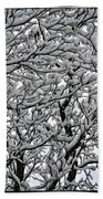 Branches Of Our Life Beach Towel