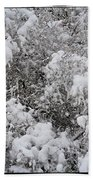 Branches Of Snow Beach Towel