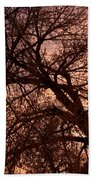 Branching Out At Sunset Beach Towel