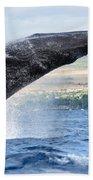 Breaching Humpback Whale Beach Towel