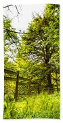 Breezy Spring Afternoon Beach Towel