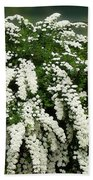 Bridal Wreath Spirea - White Flowers - Florist Beach Towel