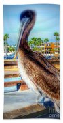 Brief Pelican Encounter  Beach Towel