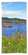 Brier Island In Digby Neck-ns Beach Towel