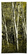 Briers And Brambles Beach Towel