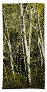 Briers And Brambles Beach Towel by Luke Moore