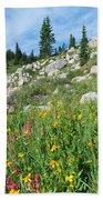 Bright Colors Of A Colorado Summer Beach Towel
