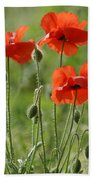 Bright Poppies 1 Beach Towel