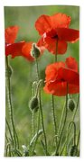 Bright Poppies 2 Beach Towel