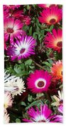 Brilliant Flowers Beach Towel