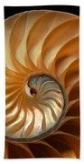Brilliant Nautilus Beach Towel