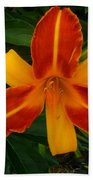 Brilliant Orange Lily Beach Towel