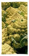 Broccoflower Beach Towel