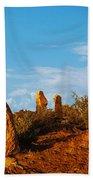 Broken Hill 2 Beach Towel