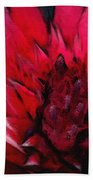 Bromeliad Splendor Beach Towel