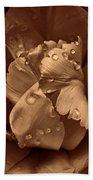 Bronze Ruffled Parrot Tulip Flower Beach Towel