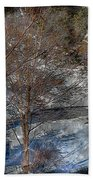 Brook And Bare Trees - Winter - Steel Engraving Beach Towel