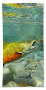 Brookie With Wet Fly Beach Towel