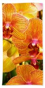 Smiling Brown And Pink Orchids Beach Towel