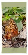 Brown Butterfly Beach Towel