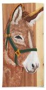 Brown Donkey On Cedar Beach Towel