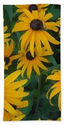 Brown Eyed Susans Beach Towel