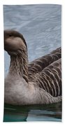 Brown Feathered Goose Beach Towel