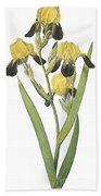 Brown-flowered Iris Beach Towel
