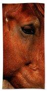 Brown Horse Beach Towel