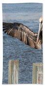 Brown Pelican Touchdown Beach Towel