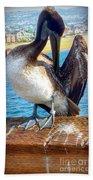 Brown Pelican Preen  Beach Towel