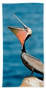 Brown Pelican Showing Pouch Beach Towel