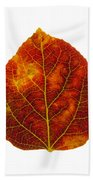 Brown Red And Yellow Aspen Leaf 1 Beach Towel
