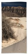 Brush In The Dunes Beach Towel