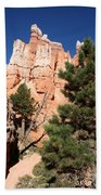 Bryce Canyon Fins Beach Towel