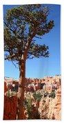 Bryce Canyon Pine Beach Towel