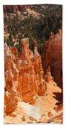 Bryce Canyon Vista Beach Towel