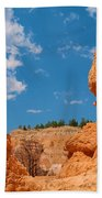 Bryce Spirals 3 Beach Towel