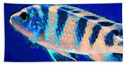 Bubbles - Fish Art By Sharon Cummings Beach Sheet