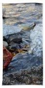 Bubbling Rocks Beach Towel