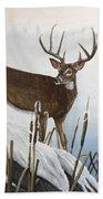 Buck At Waters Edge Beach Towel