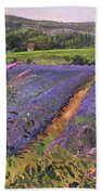 Buddleia And Lavender Field Montclus Beach Towel