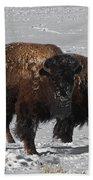 Buffalo In Snow Beach Towel