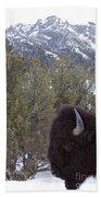 Buffalo In The Mountain   #4169 Beach Towel