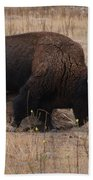 Buffalo Of Antelope Island Iv Beach Towel