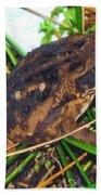 Bufo Toad Beach Towel